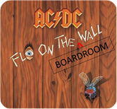 ACDC Fly on the Boardroom Wall